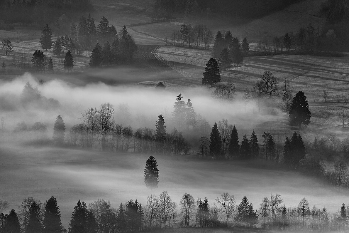 Photograph foggy by Bor Rojnik on 500px