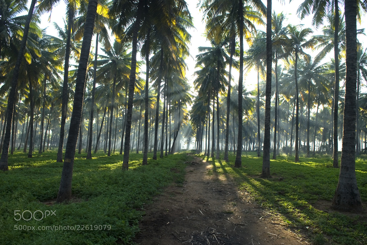 Photograph Untitled by Zacharia Ponkunnam on 500px