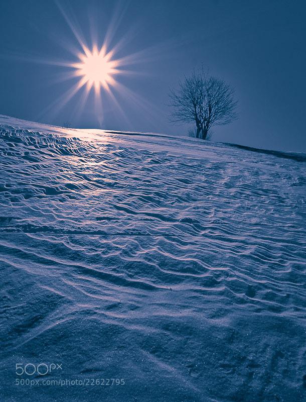 Photograph Warm winter evening by Brane Kosak on 500px
