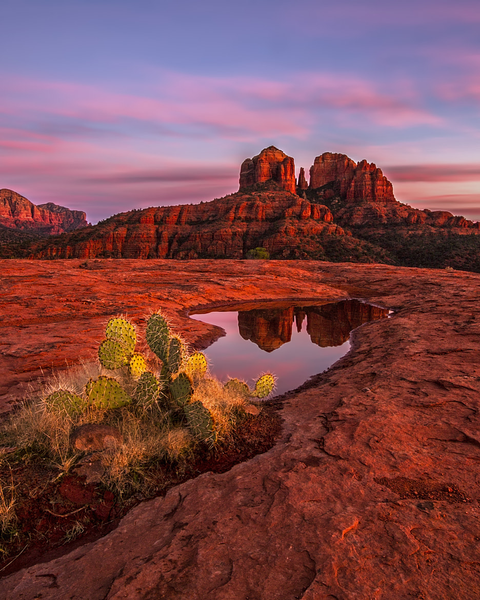 Photograph Sundown by Danilo Faria on 500px