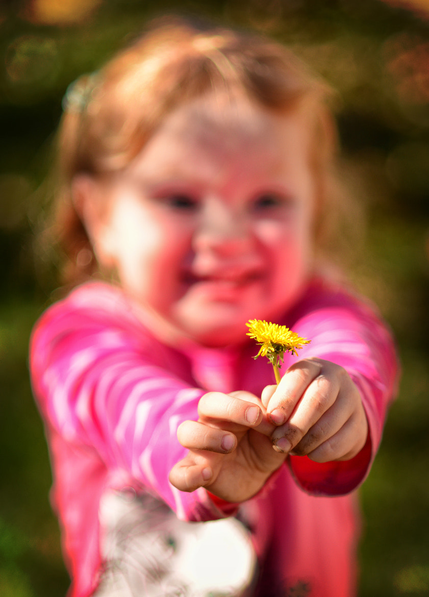 Photograph Dandelion Smile by Jeff Clow on 500px