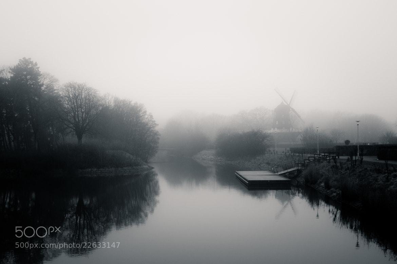 Photograph Misty Morning by Mirza Buljusmic on 500px