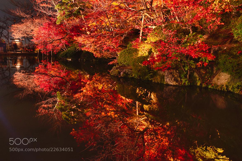 Photograph Reflection by Yoshitada Kurozumi on 500px