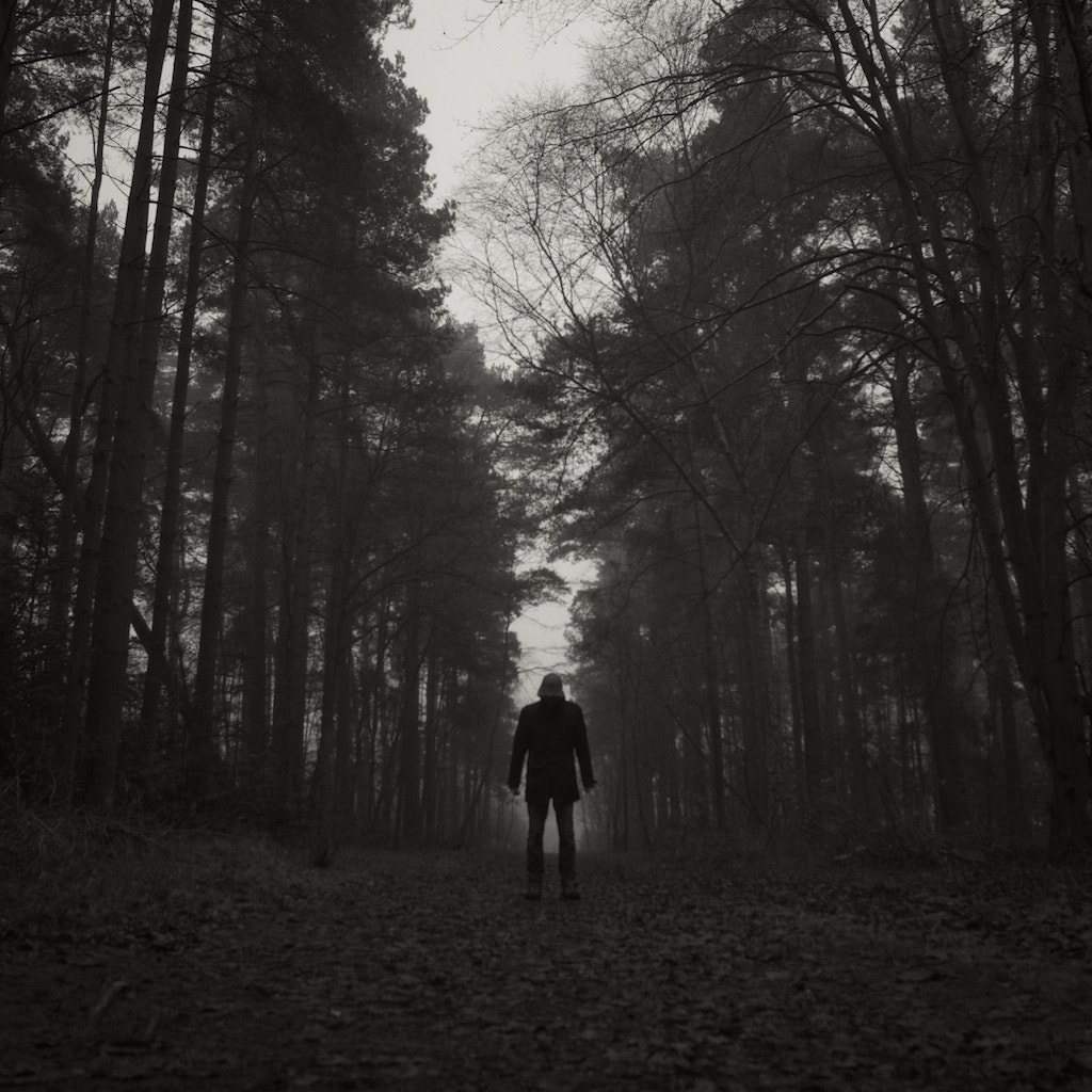 Photograph I'm looking for you in the woods tonight by Martin Fowlie on 500px