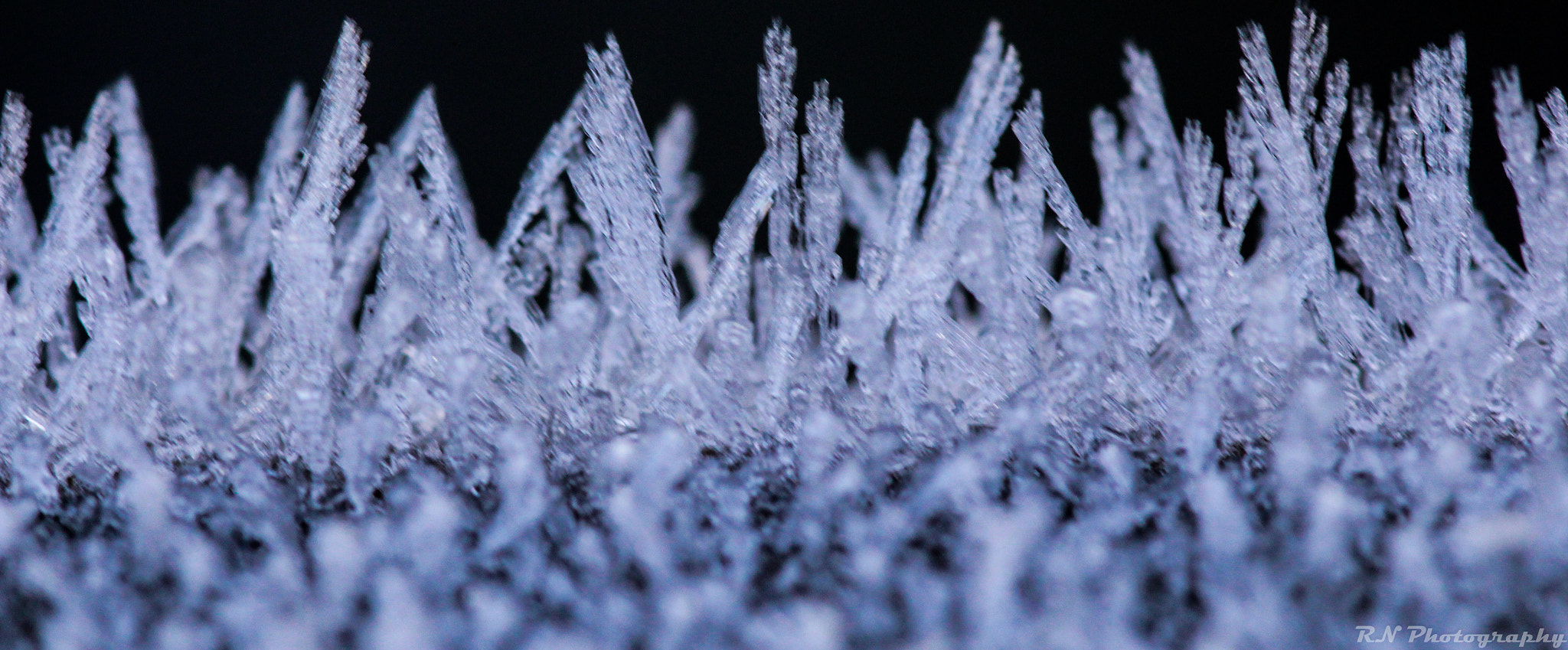 Photograph Frost 3 by Richard Nurse on 500px