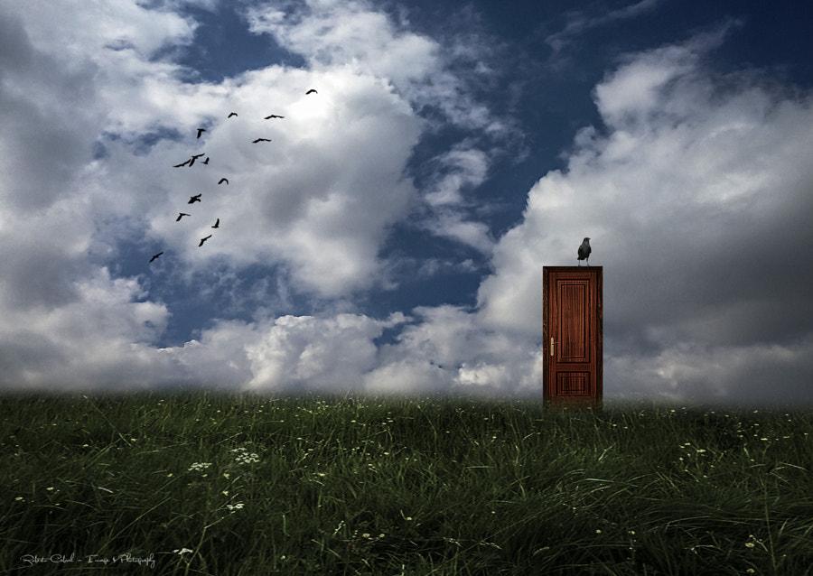 La espera de Roberto Cabral │Image & Photography en 500px.com