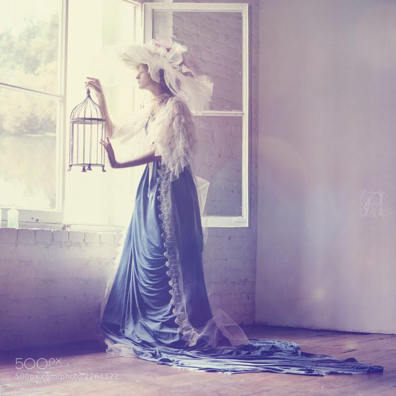 Photograph Empty Bird Cage by alhaanea illaari on 500px