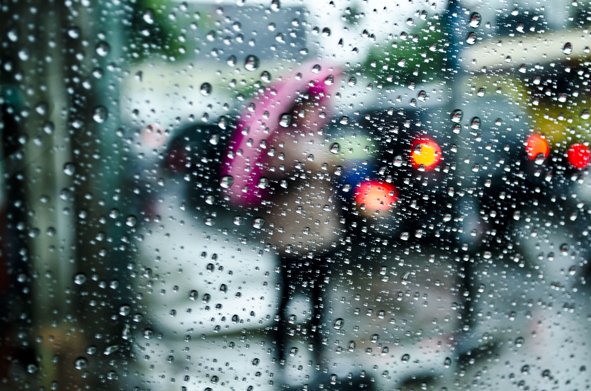 Photograph Rain drops by Alexander Brown on 500px
