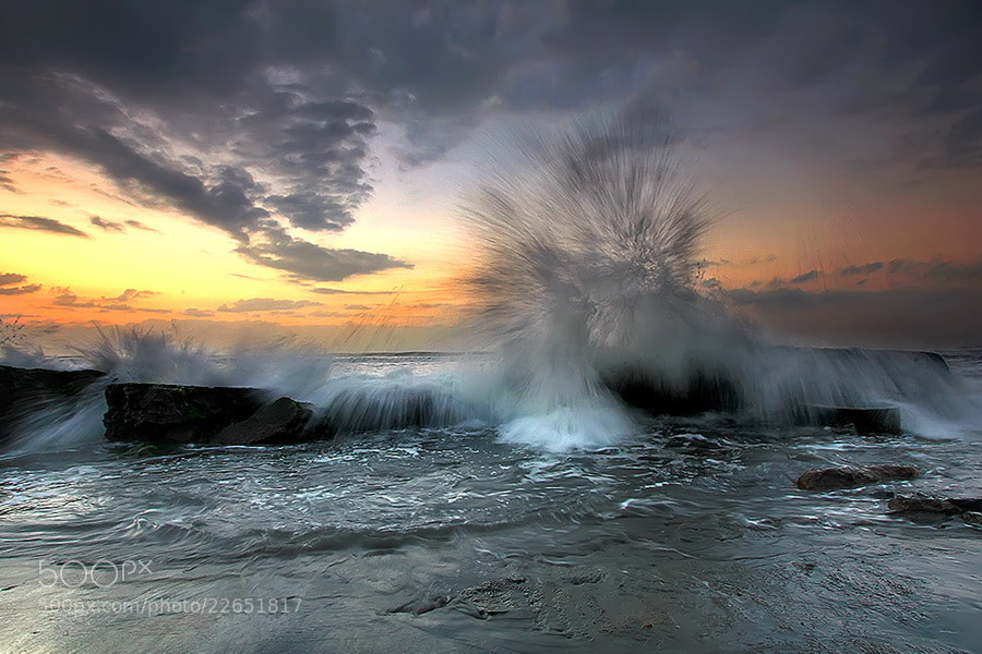 Photograph Dance with me   by Agoes Antara on 500px