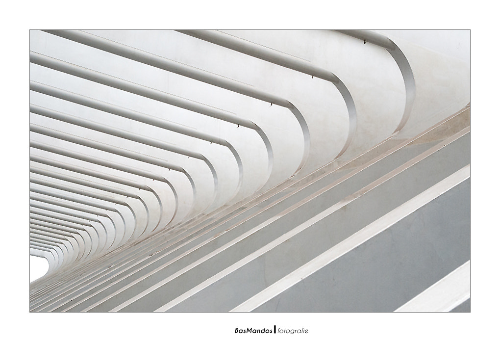 Photograph Lines.. by Bas Mandos on 500px