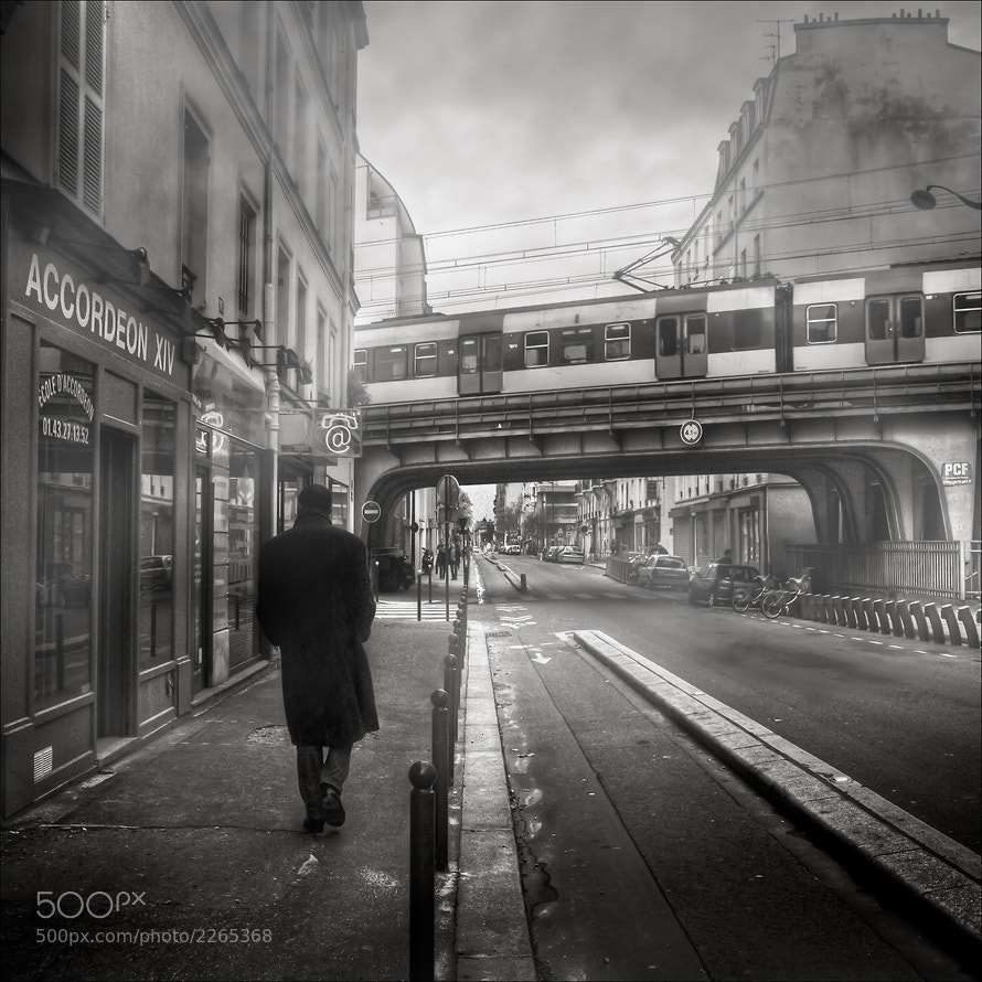 Photograph Morning Investigation by Frédéric Baque on 500px