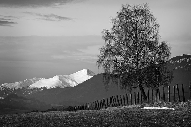 Photograph Alps  by Michael Hansmann on 500px