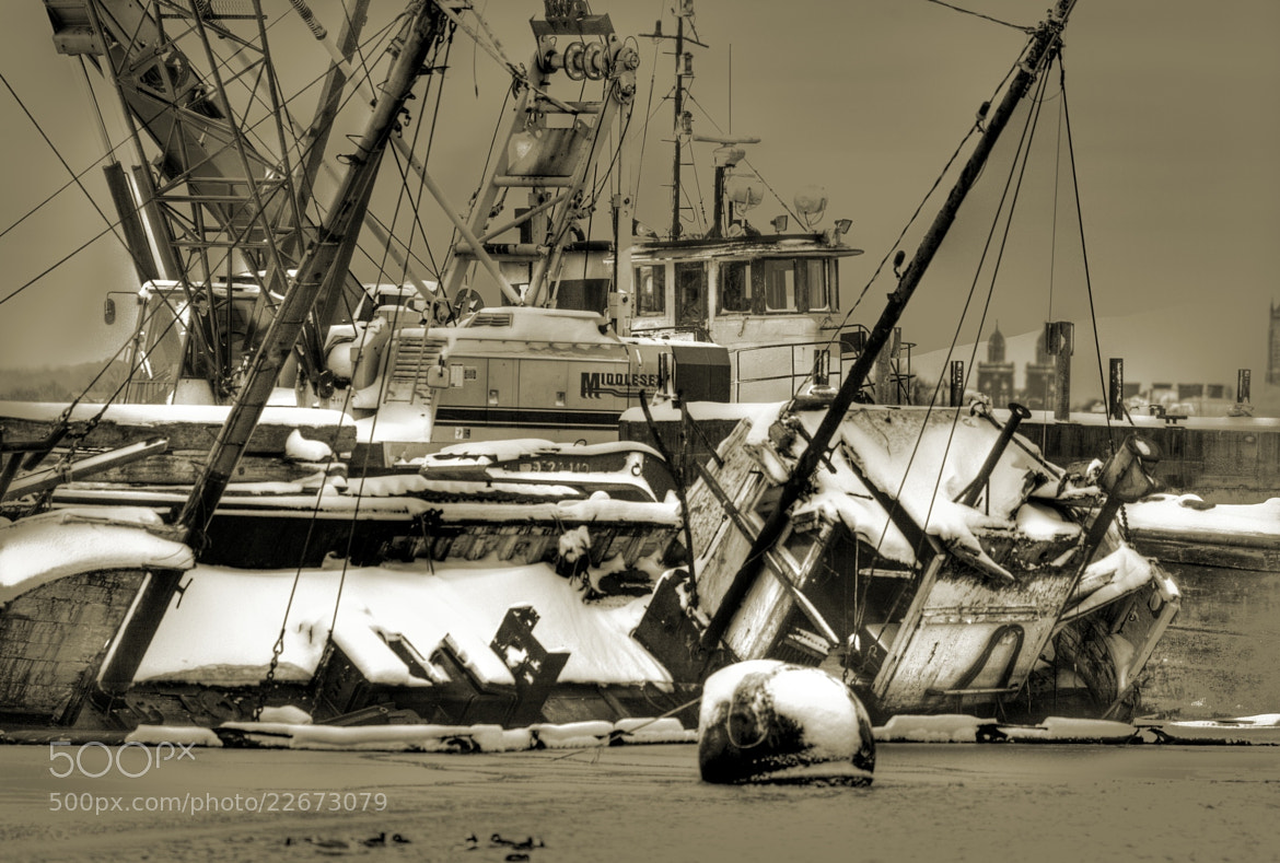 Photograph Sunk at the Dock by Terry Letton on 500px