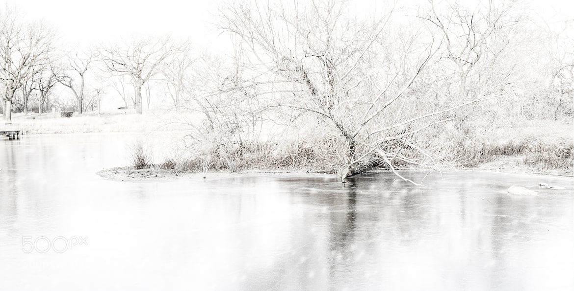 Photograph white out by jeremy vandermeer on 500px