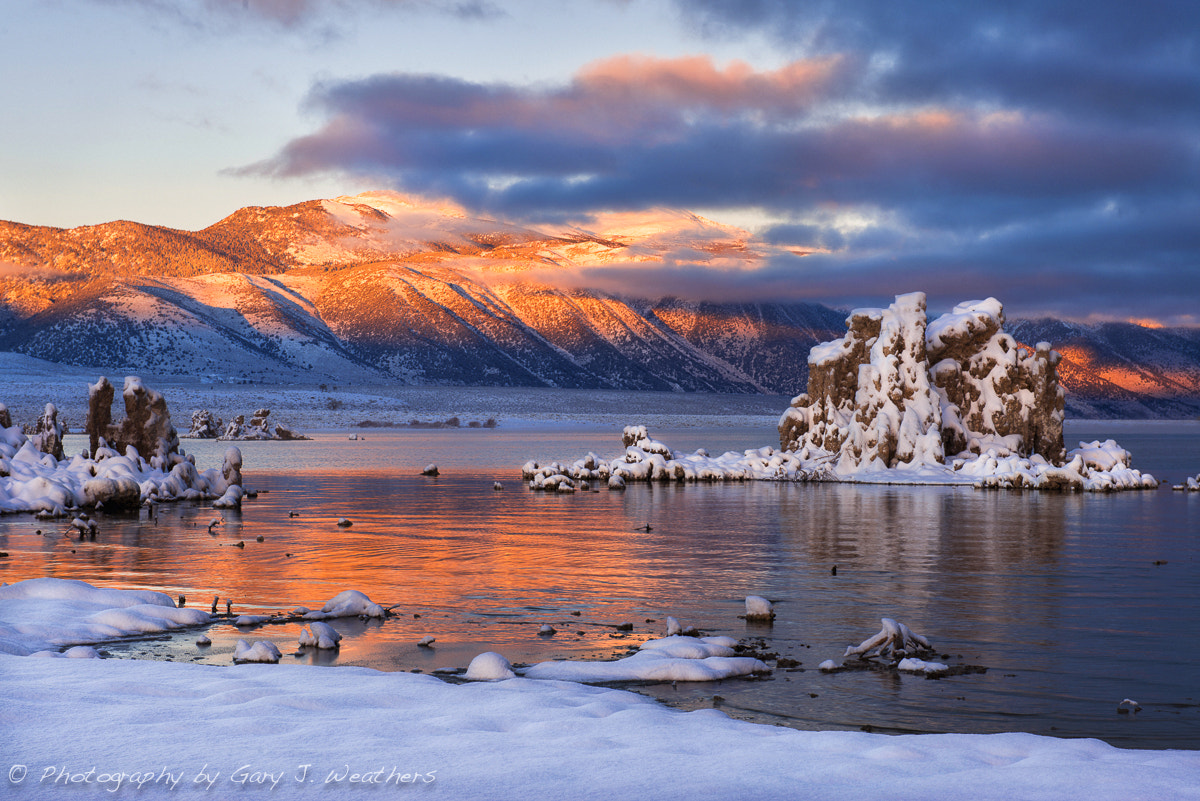 Photograph Morning color, Mono Lake. by Gary Weathers on 500px