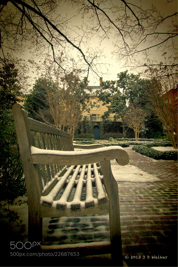 This is a bench in the garden of the Carlisle House, Alexandria, Virginia.  The Carlisle House was built before the American Revolutionary War by a Scottish businessman.  It was visited by George Washington and used as a headquarters by the British General Braddock.  Today it is a peaceful garden.