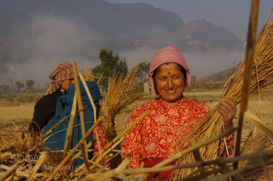 Photograph Happy field works… by Afzal Khan on 500px
