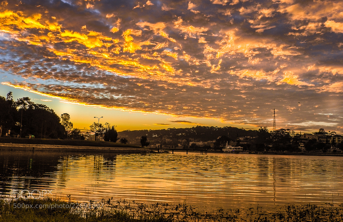 Photograph Gold light by love leica on 500px