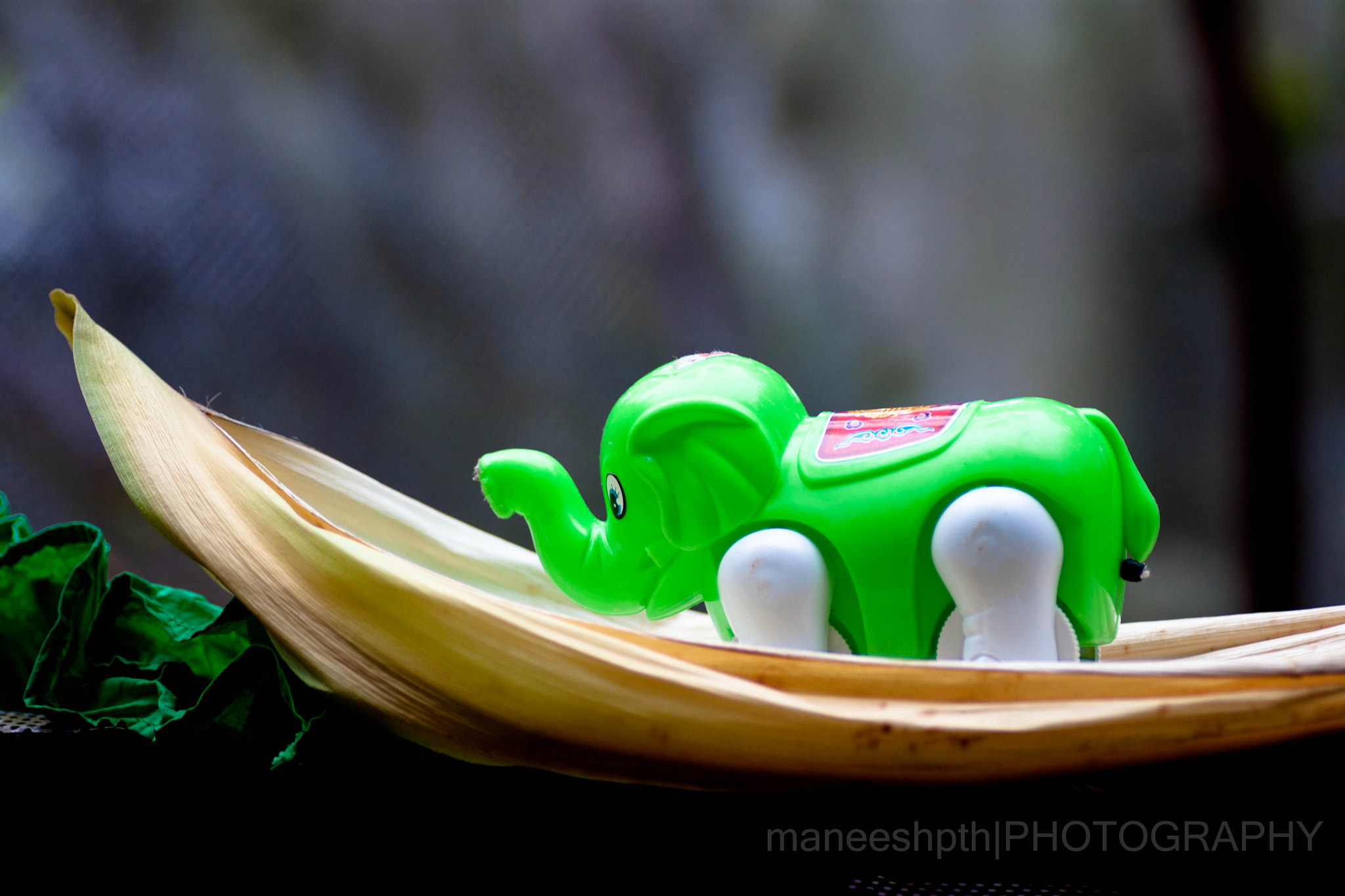 Photograph toy story by maneesh p on 500px