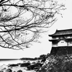Shores of Japan by Tim Grey (Tim_Grey_Photography)) on 500px.com