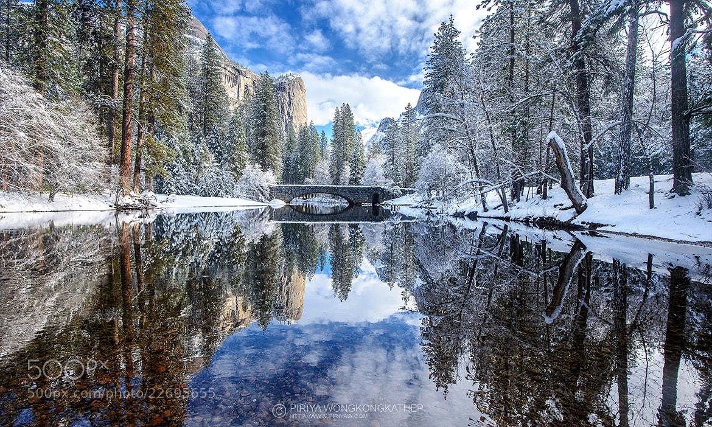Photograph Winter Wonderland by Pete Wongkongkathep on 500px