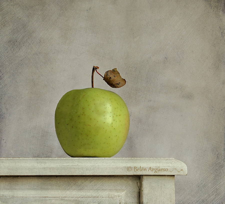 Photograph The apple... by Belén Argüeso Castelos on 500px