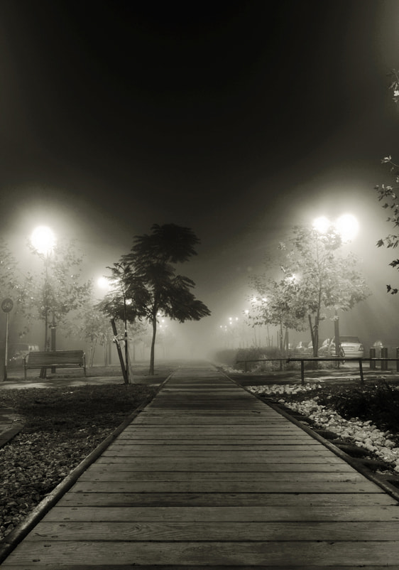 Photograph Fog by Viviane Nathan on 500px