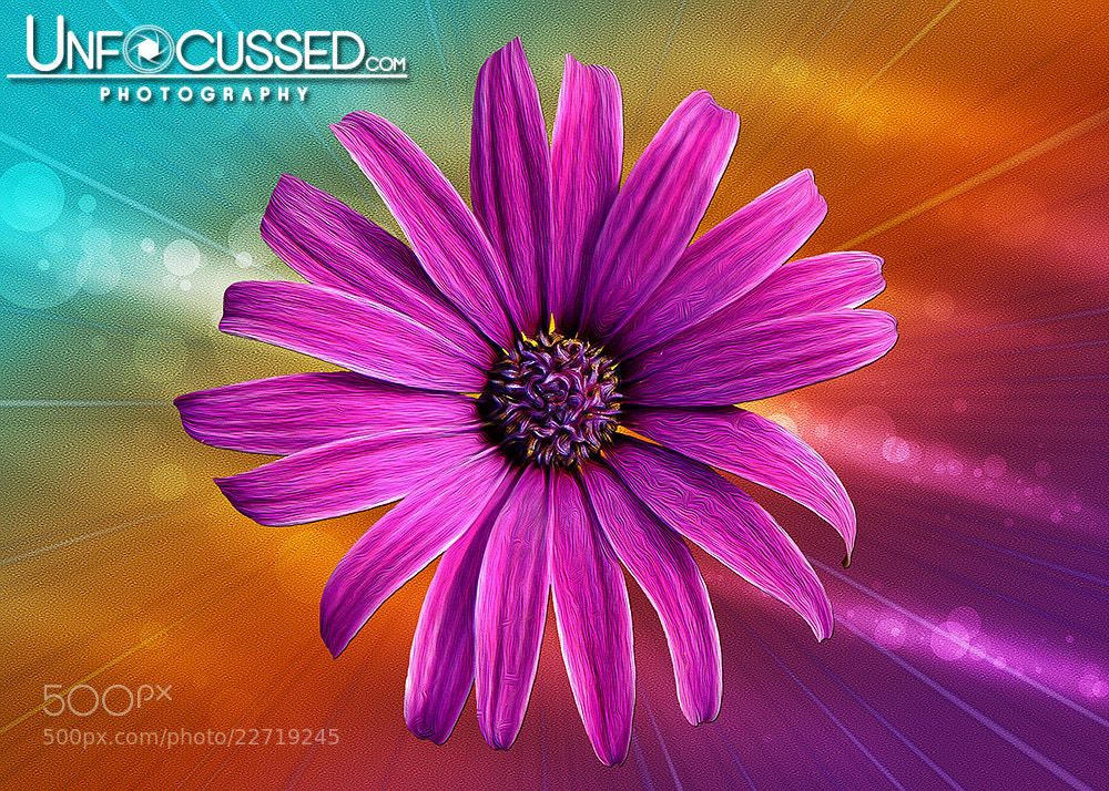 Photograph Flower Empowered by Bill Tiepelman on 500px