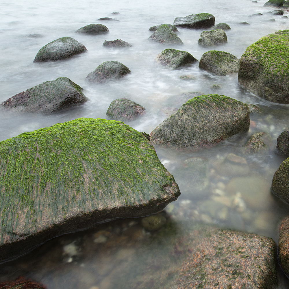 Photograph mossy stones by Yvonne Stroh on 500px