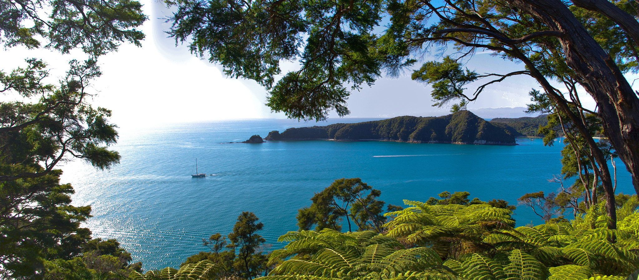 Photograph Abel Tasman Morning Sun by Mo Wu on 500px