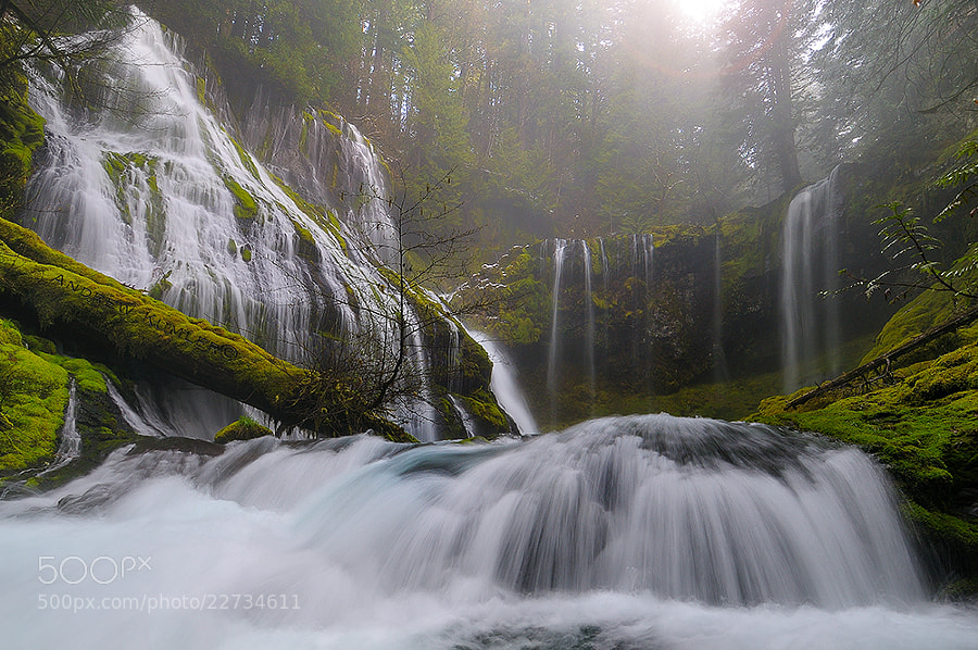 Photograph Panther Creek Falls.. by Andrew Kumler on 500px