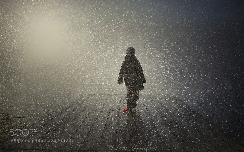 Photograph snowfall again by Elena Shumilova on 500px