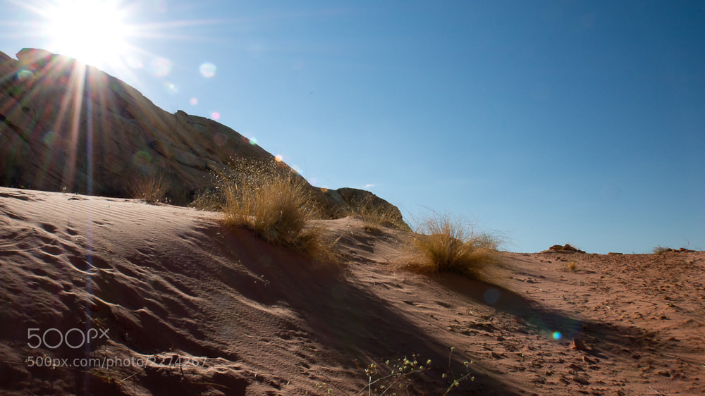 Photograph Desert Sun by Jeff Revell on 500px