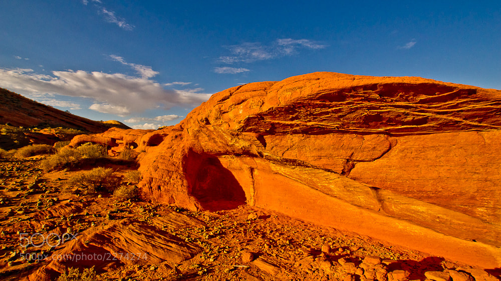 Photograph Valley of Fire by Jeff Revell on 500px
