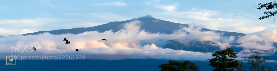 Photograph El Pico Malabo, Bioko Island by AJ Adam on 500px