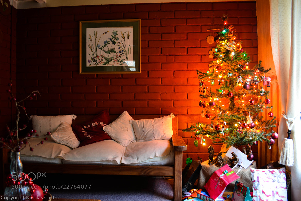 Photograph X-mas by Nicolas Castro on 500px