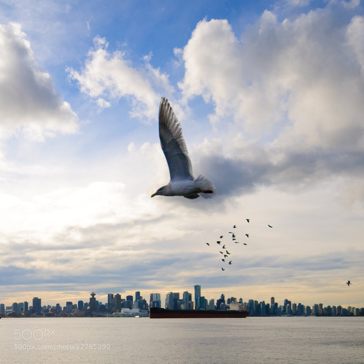 Photograph Vancouver 2 by E K on 500px