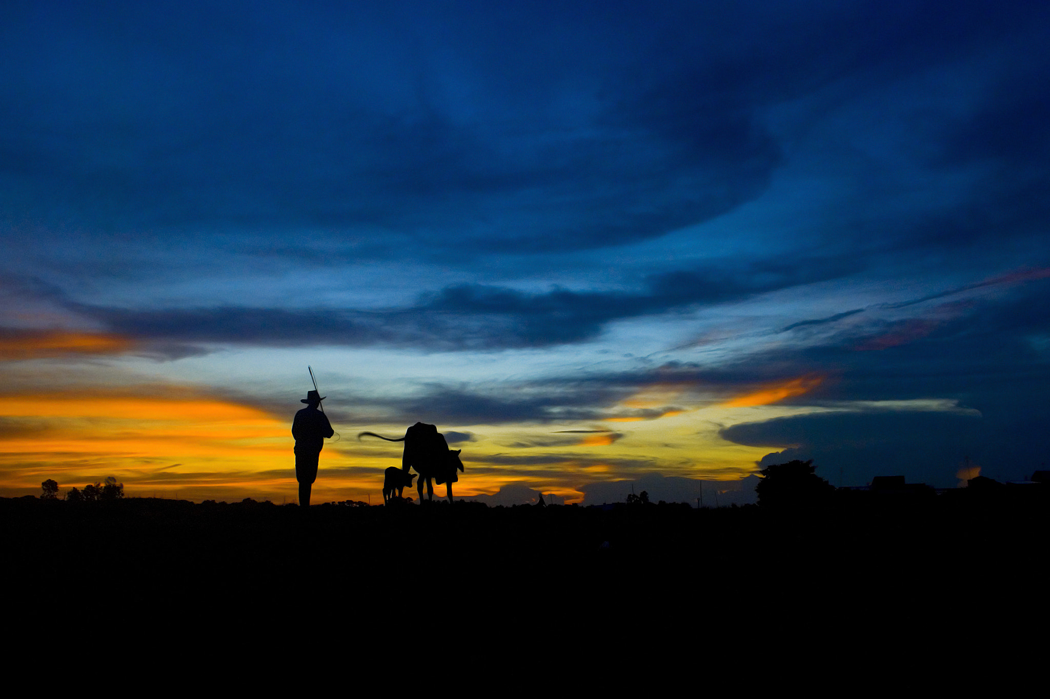 Photograph Go home . by Thachhan on 500px