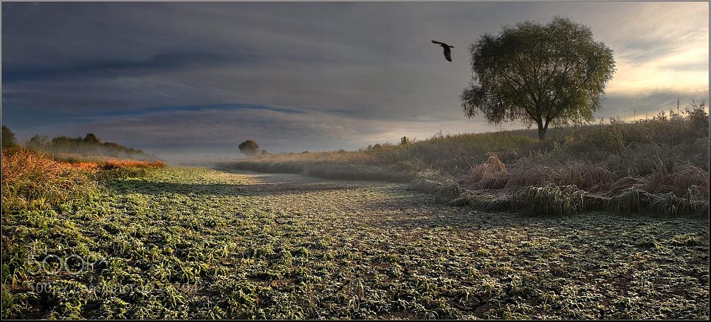 Photograph Высохшее озеро by Vadim Trunov on 500px