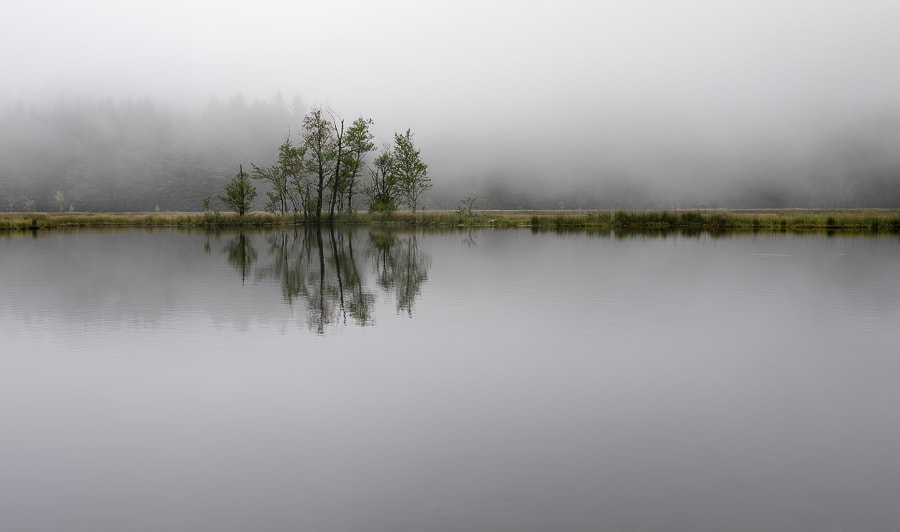Photograph Mist 2 by Stéphane ABCDEF on 500px