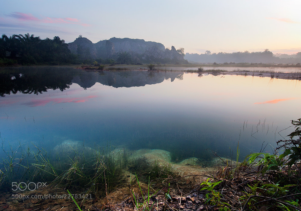 Photograph foggy morning by Melvin Tong on 500px