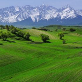 大美新疆~江布拉克