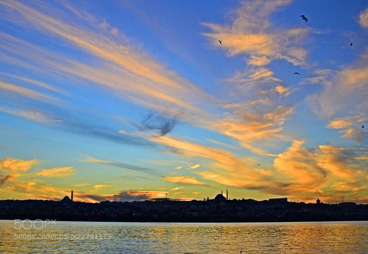 Photograph Golden Horn by Zeynep Ugurdag on 500px