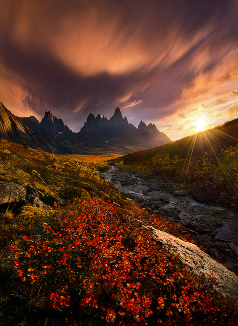 Photograph Powerlight by Marc  Adamus on 500px
