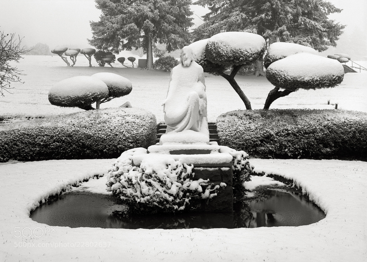 Photograph Jesus in the Snow, Portland by Austin Granger on 500px
