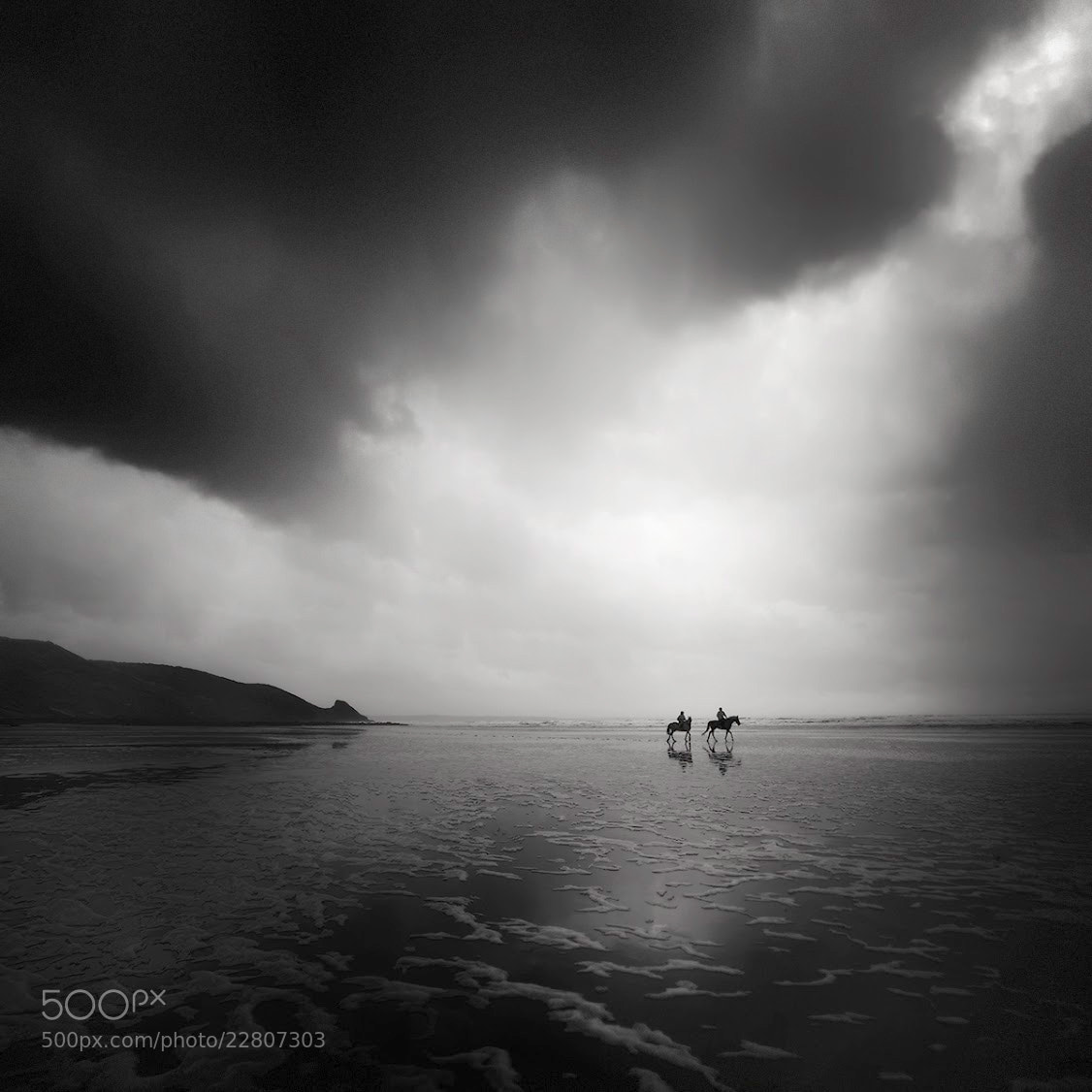Photograph ≈ See Horses II by Andy Lee on 500px