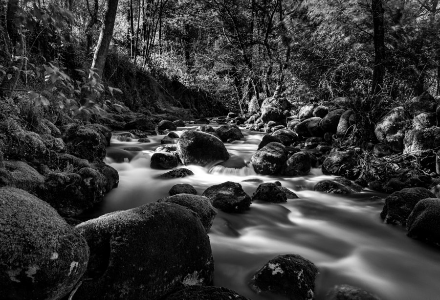 Light in the black and white river V2.0