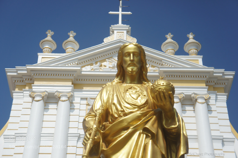 Photograph Sambha Kovil - Immaculate Conception Cathedral, Pondicherry  by Srinivasan Arumugam on 500px