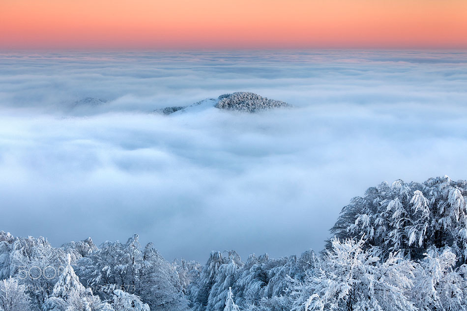 Photograph Lost In the Clouds by Evgeni Dinev on 500px