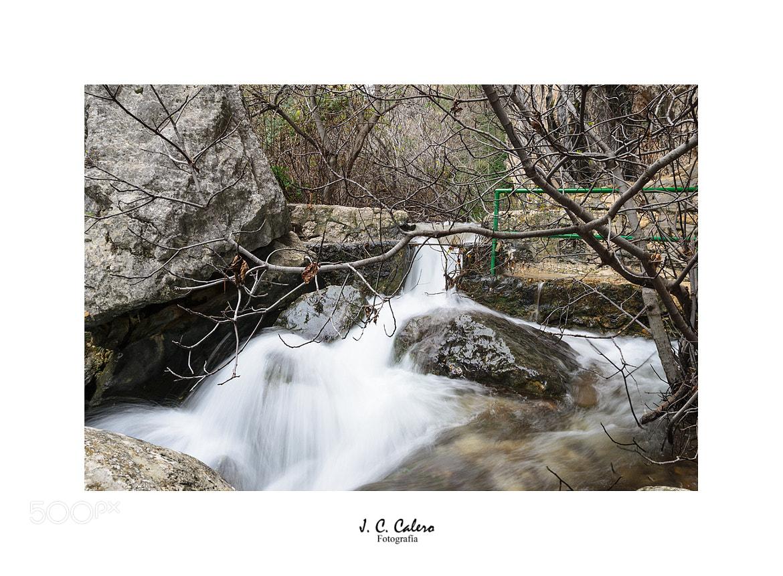 Photograph Rompe el invierno by Juan Carlos Calero on 500px